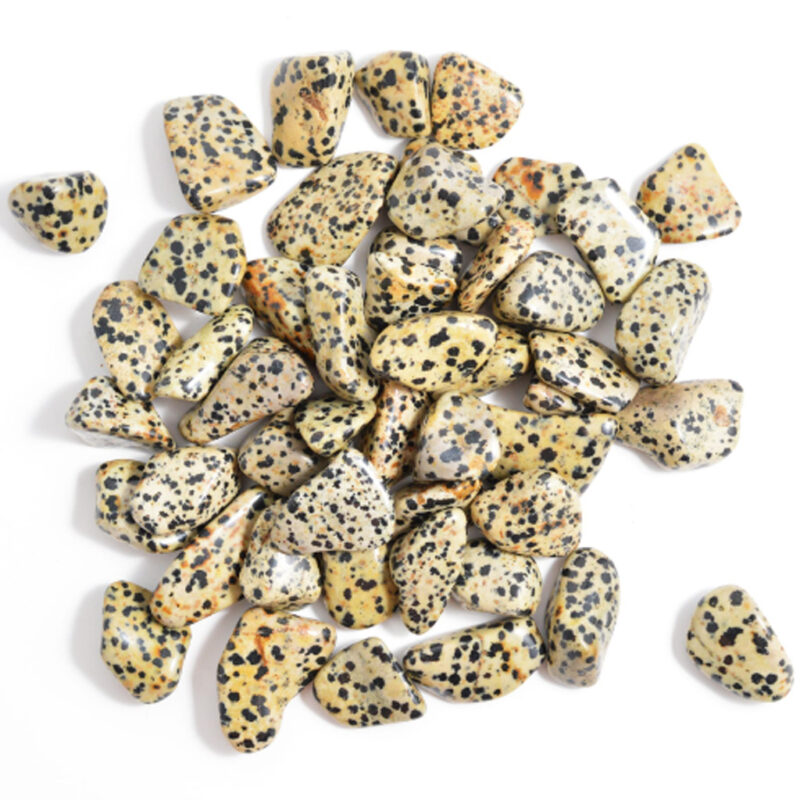 Dalmatian Jasper Tumble Stone