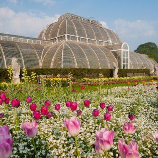 Kew Gardens Range