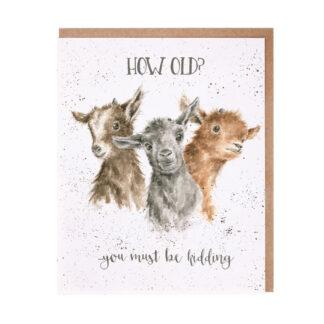 Wrendale Designs 'Just Kidding' Birthday Card