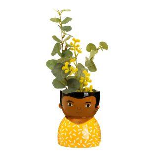 Ezra Planter